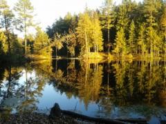 Озеро недалеко от монастыря