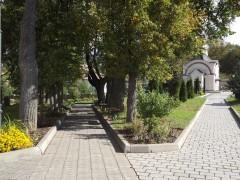 оптина 159