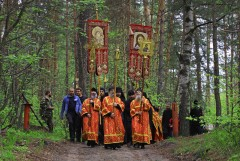 Лесной тропой ))