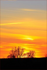 Солнце Жизни
