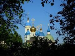 Оптинские купола