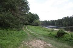 Узкий путь по лесной тропке слева от озера
