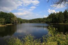 Вид на лесное озеро.
