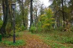 Ковровая дорожка из листьев.