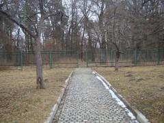Дорога в Скит