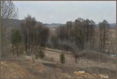 Весенний туман на р. Серене (15.03.14)