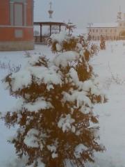 Воздушно-мягкие снега) 13.12.14