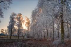 Признаки зимы (снимок сделан 27 ноября 2014 г.)