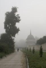 Туманное утро Воскресного дня_15 (4 сентября 2011 г.)
