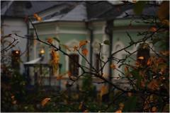 Осенняя сырость ( 5 октября 2012 г.)