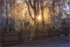 Сказочное утро (снимок сделан 27 ноября 2014 г.)