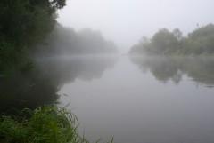 Туманное утро Воскресного дня_24 (4 сентября 2011 г.)
