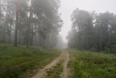 Туманное утро Воскресного дня_36 (4 сентября 2011 г.)
