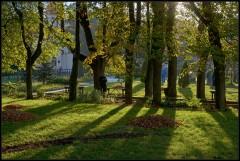 Осеннее утро ( 21 сентября 2012 г.)