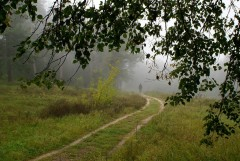 Туманное утро Воскресного дня_30 (4 сентября 2011 г.)