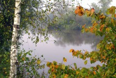 Туманное утро Воскресного дня_25 (4 сентября 2011 г.)