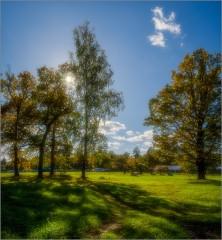 Светотени солнечного дня ( Снимок сделан 28 сентября 2014 г.)
