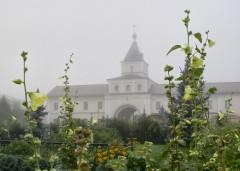 Туманное утро Воскресного дня_12 (4 сентября 2011 г.)