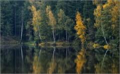Дыхание осени ( Снимок сделан 15 сентября 2012 г.)