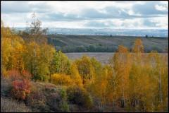 Осенние костры ( 29 сентября 2012 г.)