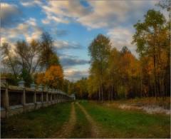 Осень за скитом (снимок сделан 1 октября 2014 г.)