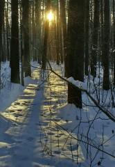 Пронизывающие лучи или путь к солнцу