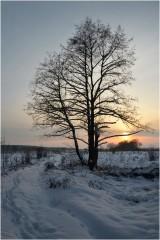 Объятые холодом, но вместе ( 9 декабря 2012 г.)
