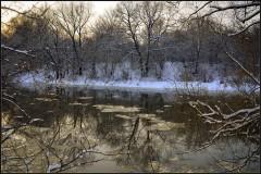 Начало зимы ( 9 декабря 2012 г.)