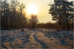 Теплый вечер ( 9 декабря 2012 г.)