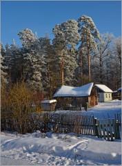 Ветхость строений, величие сосен ( 15 января 2013 г.)