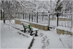 На свежем снегу ( 31 октября 2012 г.)