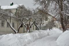 Занесенные снегом (снимок сделан 18 января 2013 г.)