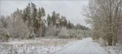 Свежий снег на лесной дороге (снимок сделан 29 января 2015 г.)