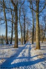 Зимняя дорога (снимок сделан 29 января 2016 г.)