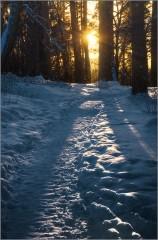 Скользящий свет по снежному покрову (снимок сделан 24 января 2016 г.)