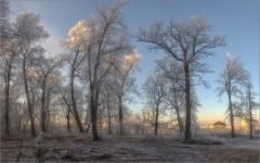 Белесое утро (снимок сделан 27 ноября 2014 г.)