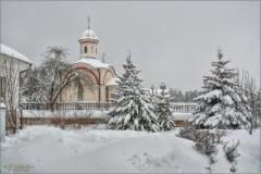 Укутанные снегом (снимок сделан 18 января 2013 г.)
