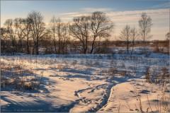 На закате зимнего дня (снимок сделан 24 января 2016 г.)