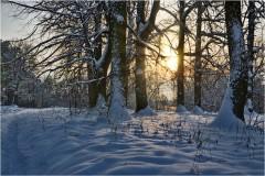 Зимний предзакатный вечер ( 9 декабря 2012 г.)