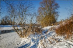 Солнечный январь (снимок сделан 26 января 2014 г.)