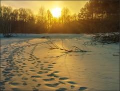 Теплые отблески заката ( 10 марта 2013 г.)