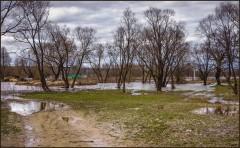 После разлива ( Снимок сделан 21 апреля 2013 г.)