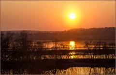 Солнце в разливе ( 17 апреля 2013 г.)