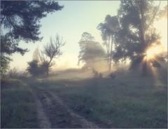 Пробивающийся свет раннего утра (снимок сделан 21 мая 2014 г.)