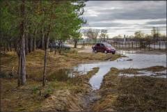 Мойка в естественной среде ( Снимок сделан 21 апреля 2013 г.)