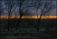 Апрельские сумерки ( Снимок сделан 21 апреля 2013 г.)