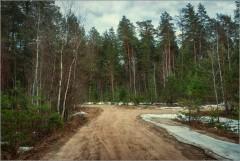 На развилке дорог ( Снимок сделан 21 апреля 2013 г.)