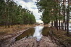 Разлив достигший лесных дорог ( Снимок сделан 21 апреля 2013 г.)