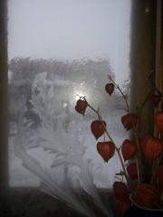 Зимняя икебана