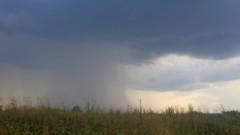 Грибной дождь (Козельск - Оптина)